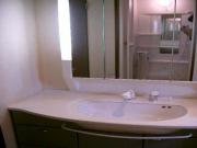 グランバリエ光ヶ丘B102洗面化粧台